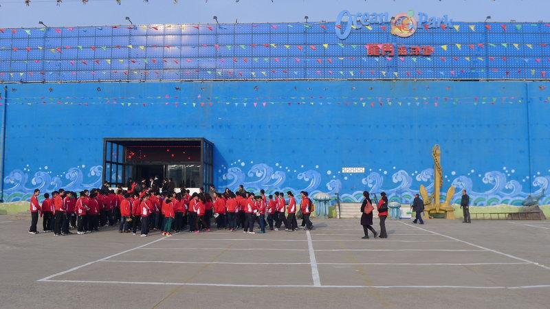 我校小学生参观洛阳龙门海洋馆