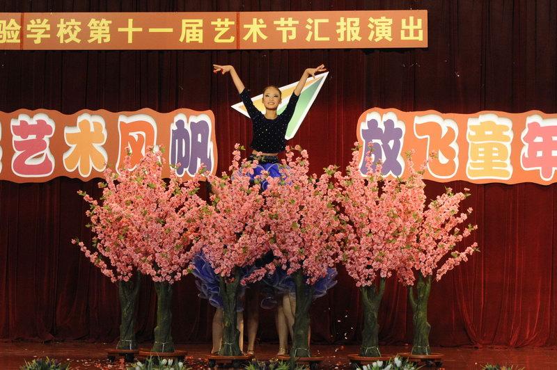 诗歌朗诵,舞蹈,吉他弹唱,葫芦丝演奏,英语音乐剧,拉丁舞,英语儿歌联唱